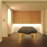 Soigneur treatment room