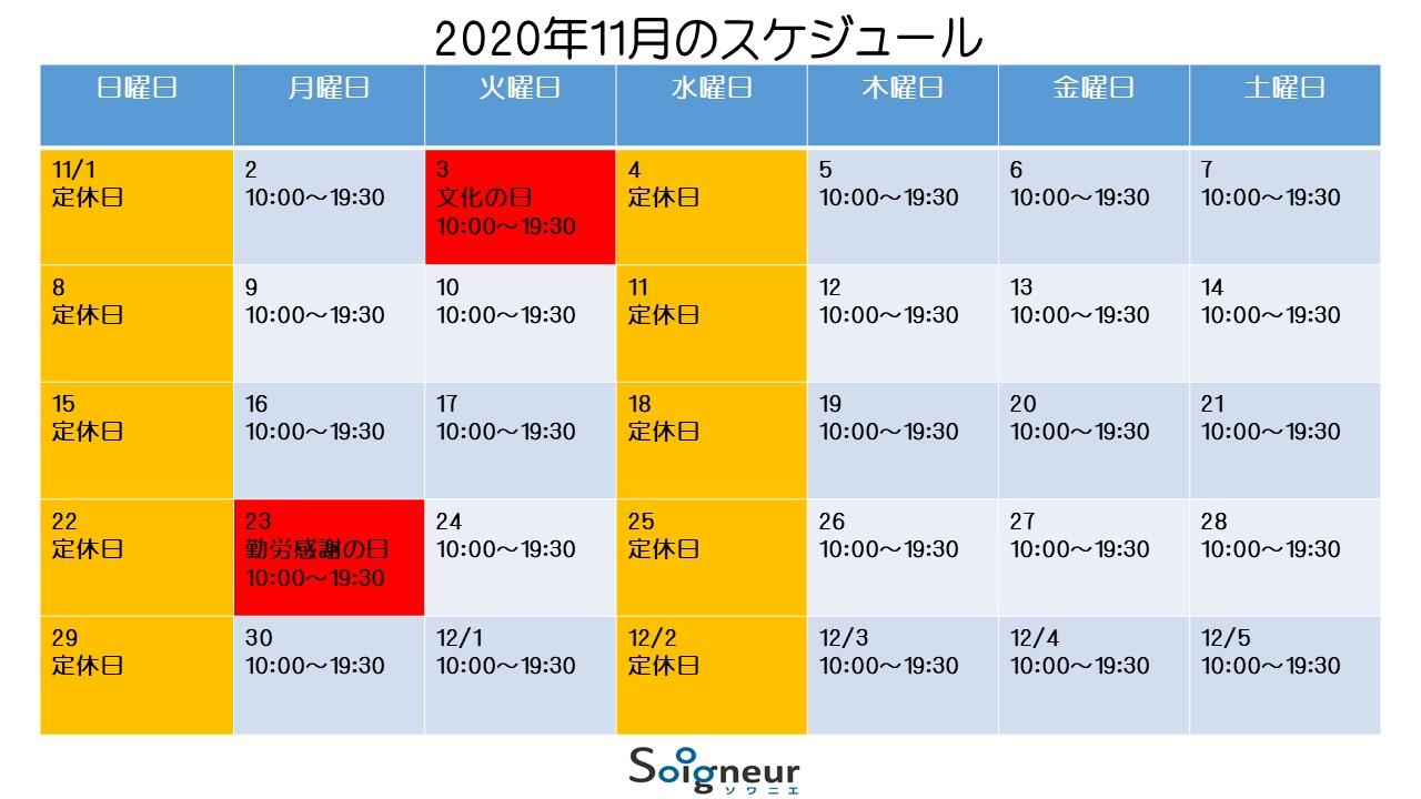 2020年11月のスケジュール
